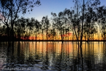 Lakes;australia;background;beautiful;beauty;blue;branch;bright;color;colorful;da