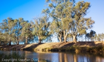 australia;beautiful;bush;calm;color;colour;country;creation;ecology;ecosystem;en