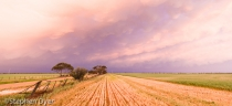 agriculture;agronomy;cloud;clouds;crop;crops;ecology;ecosystem;environment;envir