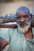 africa;african;africana;big;bushman;collecting;conservation;ecology;hwange;male;
