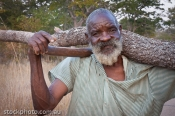 Dete;africa;african;africana;big;bushman;collecting;conservation;ecology;horizon